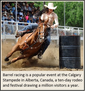 Calgary Stampede Barrel Racing