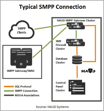 Typical SMPP Connection