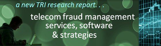 A Sweeping 239-Page Research Report on Fraud Management Solutions & Strategies